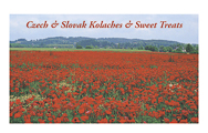 Penfield-Books_Czech-Slovak-Kolaches_Magnet