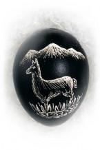 Llama (an-10)