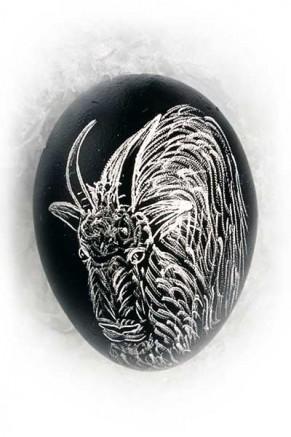 Wild Goat (an-11)
