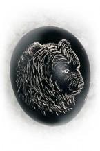 Bear (an-7)